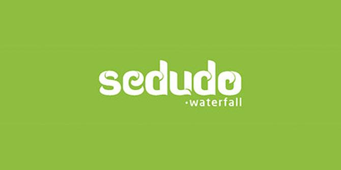 Contoh Logo Wordmark Sedudo