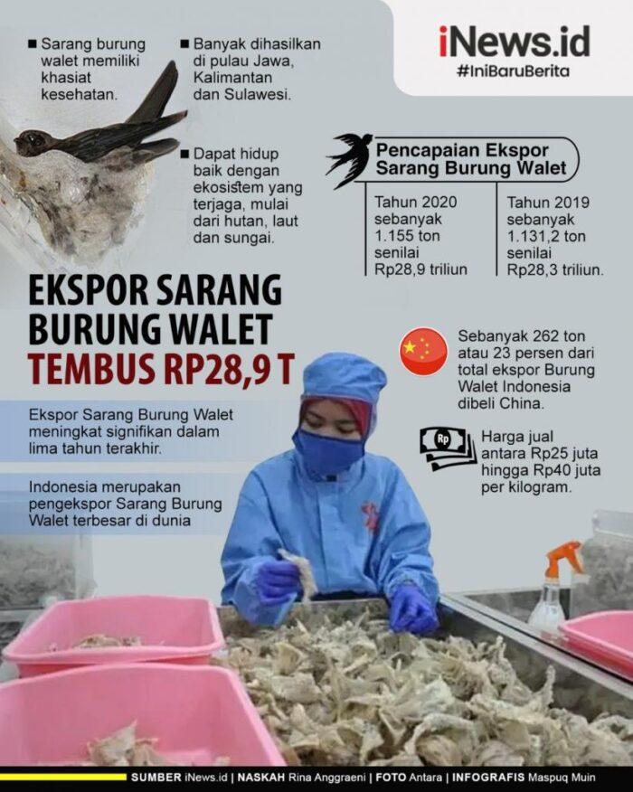 Infografis Ekspor Sarang Walet